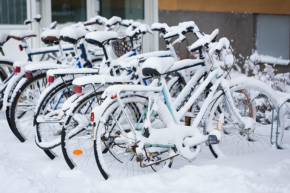 cykelproblem