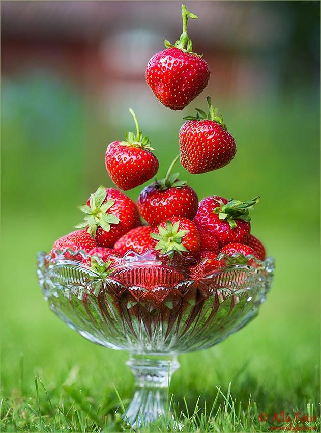 jordgubbsbilden