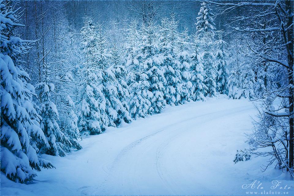 tisdagstema_vinterlandskap