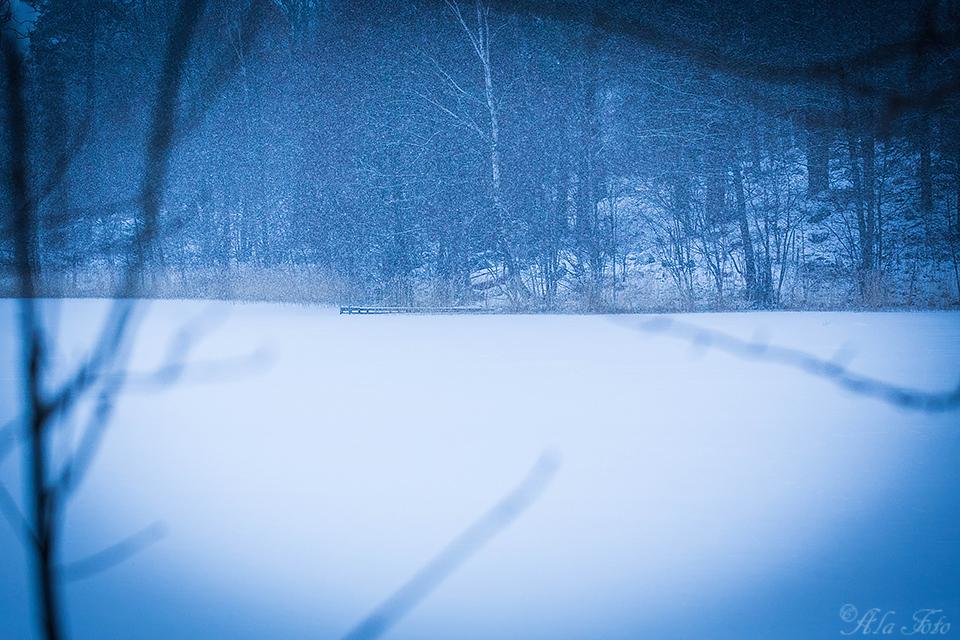 vintervidsjon